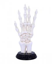 Skeletthand mit Wahrsage Symbolen