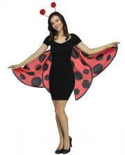 Soft Ladybug Wings With Bulb
