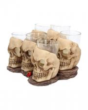 Skull Shot Glass Set 6 Pcs.