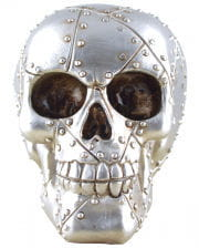 Skull With Steel Plate Look