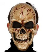 Skull Skull Mask