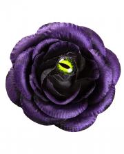 Violette Rosen Haarspange mit Katzenauge