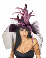 Witch Hat With Feathers Purple