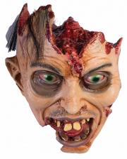 Zombie Autopsie Schädel