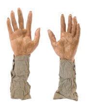 Zombie Hands As A Garden Plug