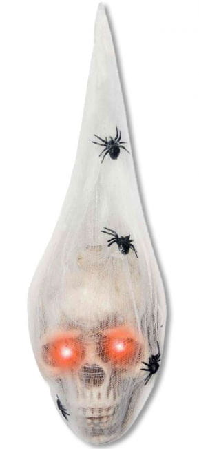 Totenkopf im Spinnencocon