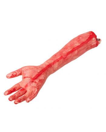 Chopped bloody arm