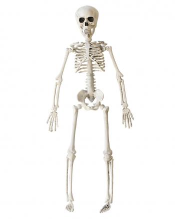 Halloween Skeleton 40 Cm