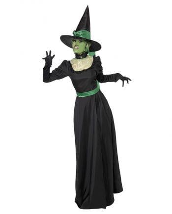 Böse Hexe Kostüm schwarz-grün | Hexenkostüme online kaufen | Horror ...