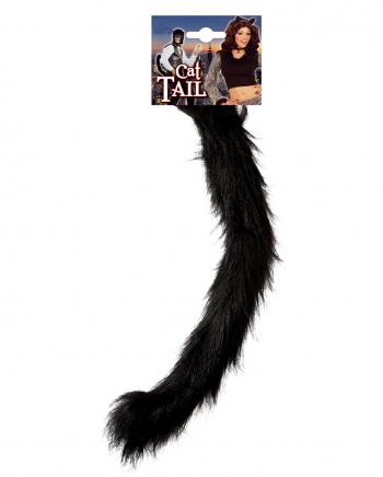 Buschiger Katzenschwanz