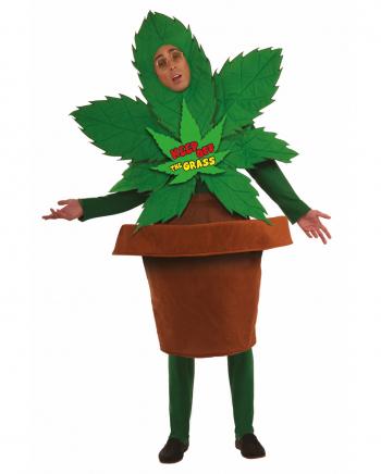 Cannabis Blumentopf Kostüm