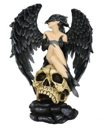 Dark Angel Raven on Skull