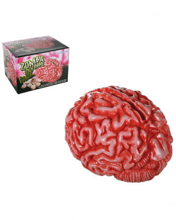 Zombie Gehirn Spardose als Geschenk für Horror Fans | Horror-Shop.com