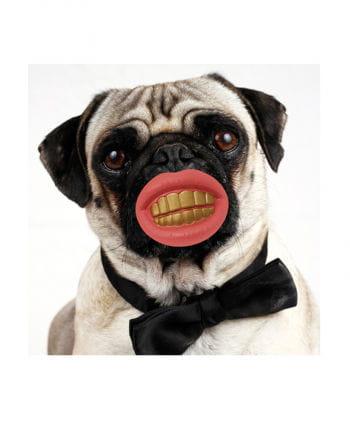 Hundespielzeug Grinseschnuller Schrilles Hundekostüm | Horror-Shop.com