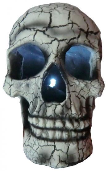 Bright White Skull