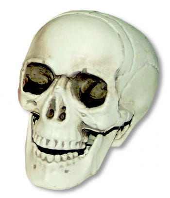 Mini skull with moving jaw