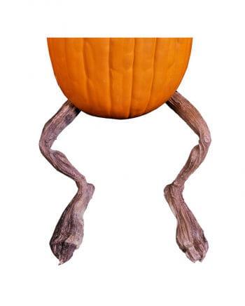 Moldy pumpkin legs   Halloween pumpkin decoration   horror-shop.com