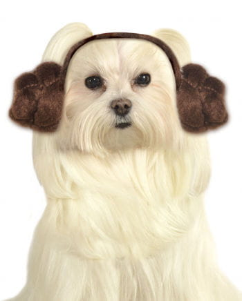 Princess Leia Dog Frisur