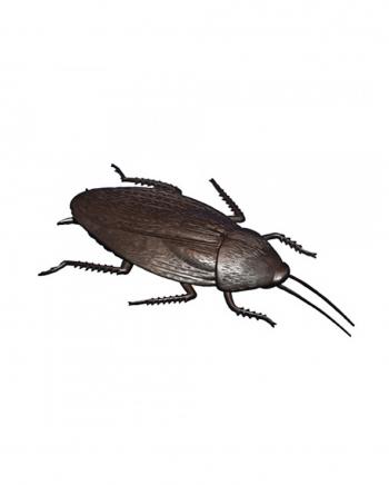 Giant Cockroach 12 Cm