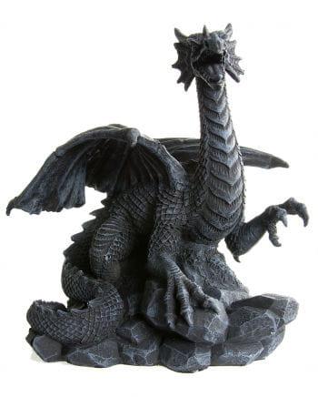 Black dragon on rock