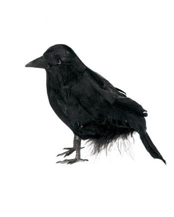 Black Raven 15 cm
