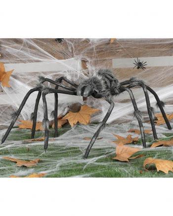 Skeletonized Spider 125cm
