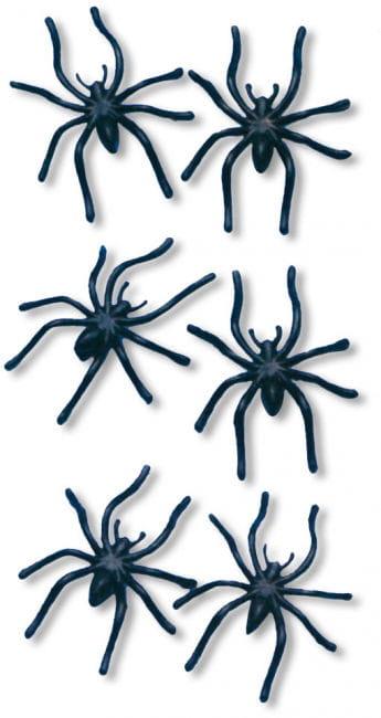 Spinnen 24 St