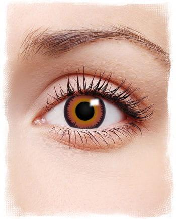 Twilight Kontaktlinsen