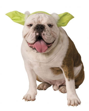 Yoda ears for dog & cat