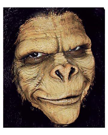 Chimpanzee Foam Latex Application