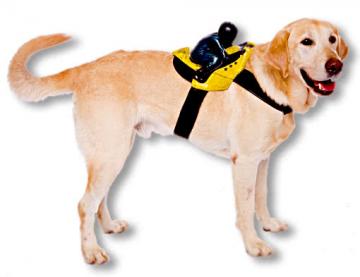 Motorcyclist Dog Costume