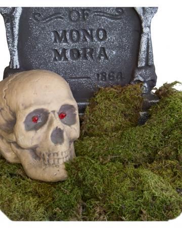 Deko Moos 80g