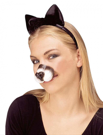 Cat Nose