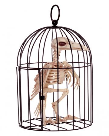 Krähen Skelett im Käfig