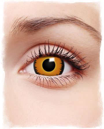 Mini-sclera contact lenses Orange Werewolf