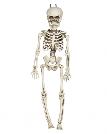 Mini Skeleton Hanging Figure 40cm