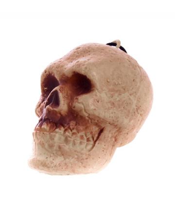 Miniature Skull