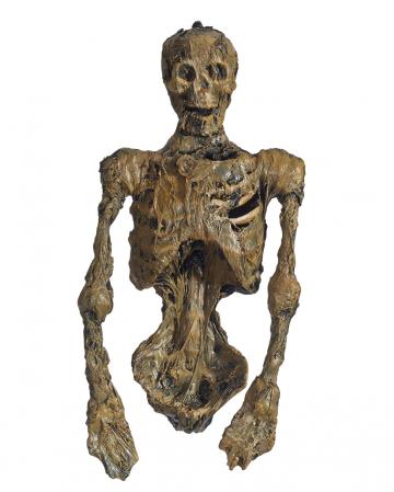 Mummified Corpse With LED Eyes
