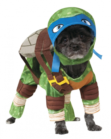 Ninja Turtle Leonardo Dog Costume