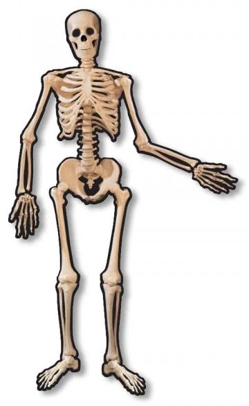 Skelett Türdekoration
