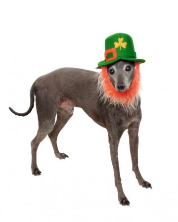 St. Patricks Day Hut mit Bart für Hunde