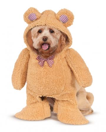 Teddy Bär Hundekostüm