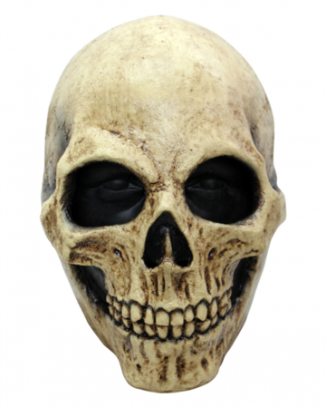 Weathered Skull Mask