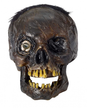 Rotten Skull With LED Eye