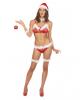 Sexy Christmas Bikini velvet