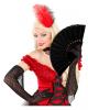 Black Fabric Fan