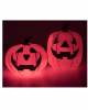 Collapsible Pumpkin With Light 73 X 58 Cm