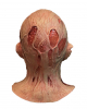 Freddy Krueger Mask Deluxe Nightmare 4