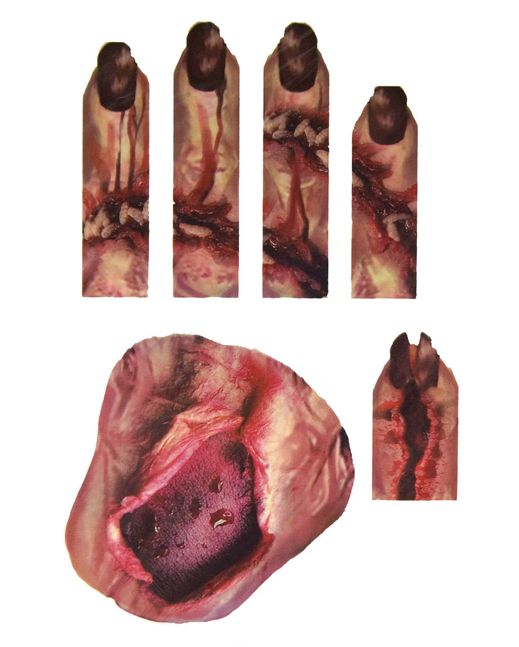 3d hand tattoo with wounds maggots halloweentattoo for for Fake wound tattoos