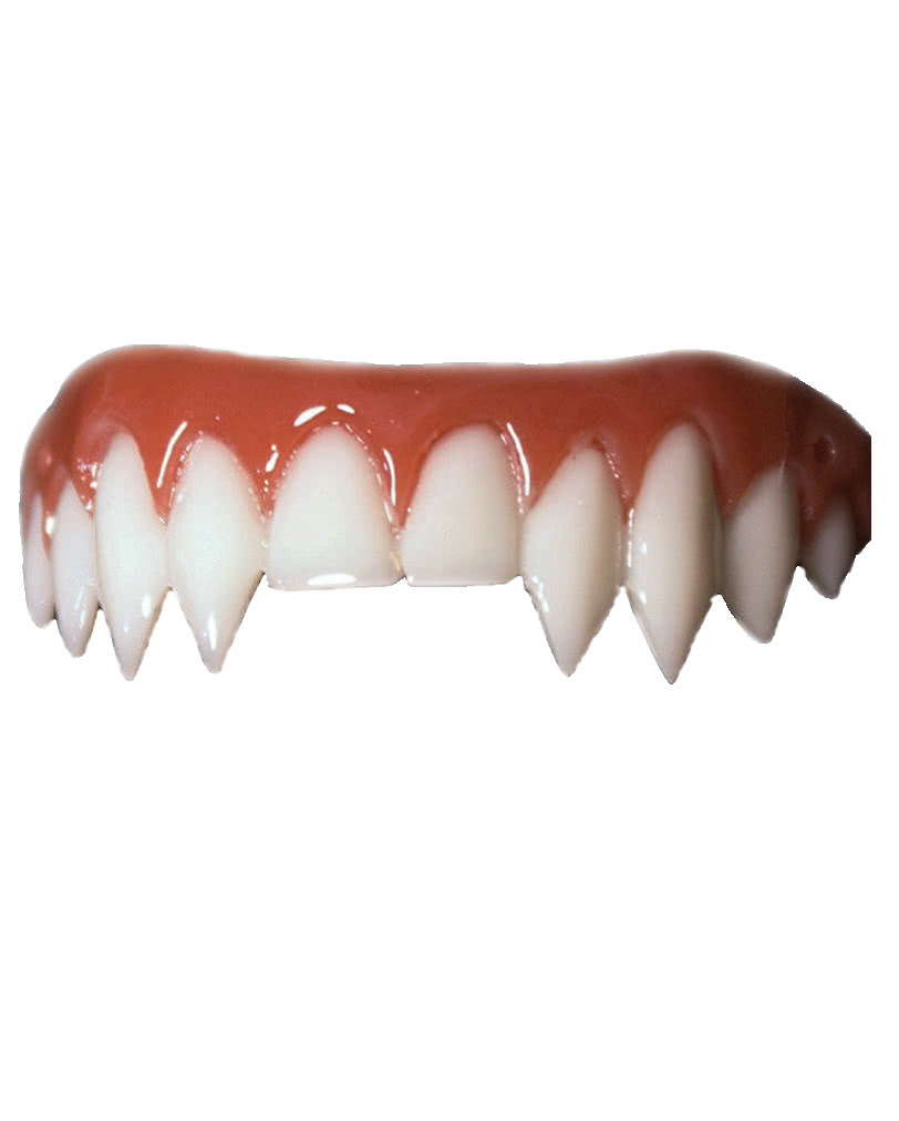 Permanent Vampire Teeth Implants – Jerusalem House